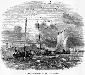 Oyster Dredging at Cockenzie